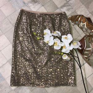 Chico's skirt